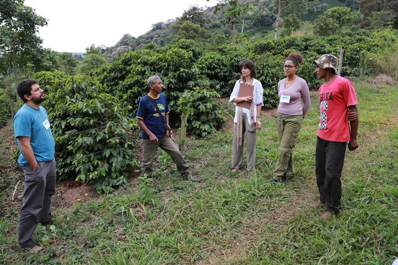 rsz capa agricultores araponga