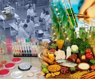 comida laboratorio