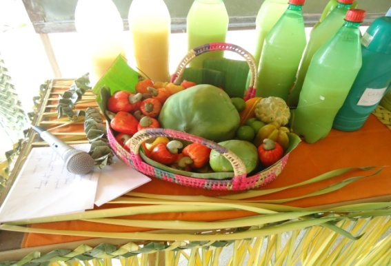 frutas santarem