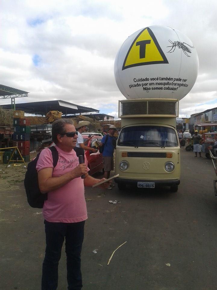 mosquito mercado