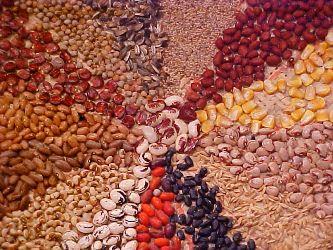 semetes st