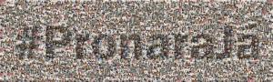 pronaraja_mosaico